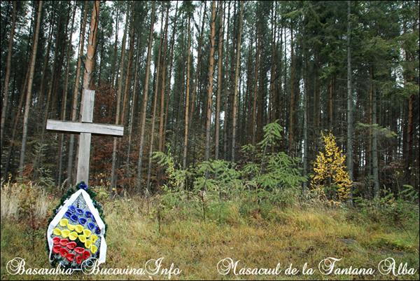 Masacrul de la Fantana Alba 21 - Basarabia-Bucovina.Info