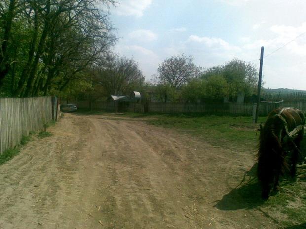 22 Ulita in satul Napadeni - Pr ziarist Grigore Constantinescu - Glasul Basarabiei - Basarabia-Bucovina.Info