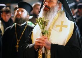 """IPS Teofan: """"Societatea românească de astăzi se află «în durerile naşterii»: frământare, agitaţie, fapte de eroism sau trădări"""""""